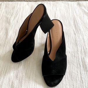 •Halston Heritage• Black Suede Sandals, EEEUC